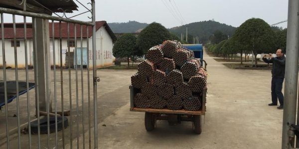 Bezoek aan vuurwerkfabriek in China, zomer 2016